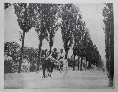 """Il viale Del Ronco. Immagine del 1905 tratta da """"La Piè"""" del 1920."""