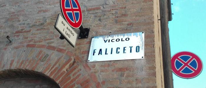 FALICETO (VICOLO)